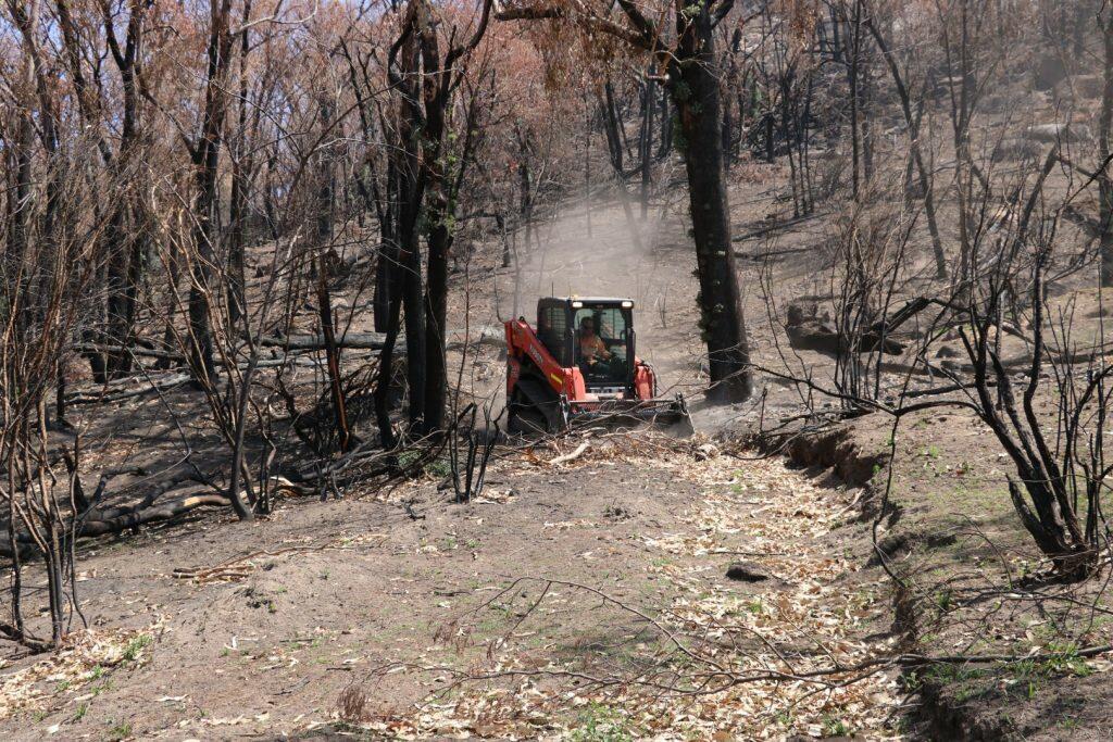 Bush Fire Relief