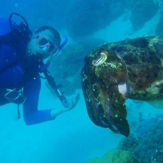 Nabeel Sadaka Scuba Diving